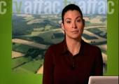 Informativo ATTAC.TV: Banca ética