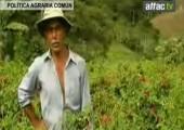 INFORMATIVO ATTAC.TV: Reforma de la Política Agraria Común (PAC)